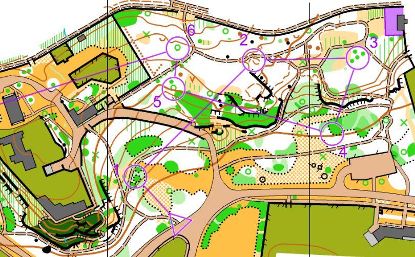 Úvodní lesoparková pasáž sprintu kat. D20. Odkaz na Routegadget.